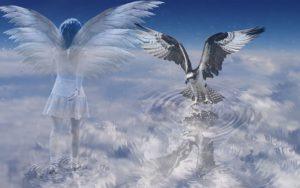 anđeli.sudbina.org